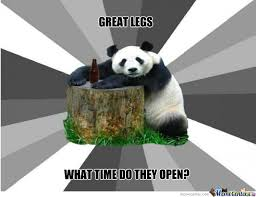 Pick Up Line Panda Meme - bad pickup line panda by xorcist meme center