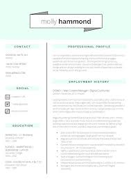 Intrigue Cv And Resume Writing 144 Best Creative Cvs Images On Pinterest Resume Cv Cv Ideas