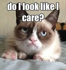 Like I Care Meme - do i look like i care picture quotes