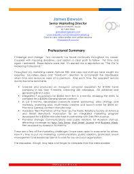 Samples Of Professional Summary For A Resume by Sample Resume Career Summary Examples Of Professional Summary For