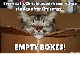 Christmas Cat Memes - every cat s christmas wish comes true the day after christmas empty