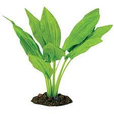 silk plants aqua one broad leaf silk plant petbarn