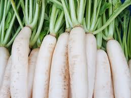 20 surprising benefits of radish organic facts