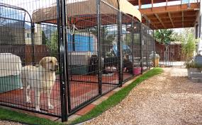Dog Kennel Flooring Outside by Fence Brachman Outside Dog Fence Tremendous Outdoor Dog Fence