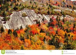 fall colors surround rock cliff blueridge parkway stock