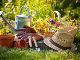 alpharetta to host free fall vegetable gardening class