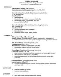 Attorney Resume Sample by Safeway Courtesy Clerk Resume Sample Http Resumesdesign Com