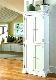 shallow wall cabinets with doors shallow wall cabinet andikan me