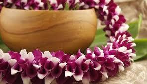hawaiian leis hawaiian kalani packaging