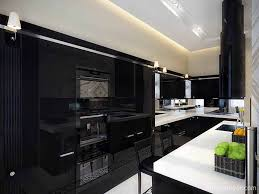 Small Kitchen With Reflective Surfaces 39 Inspirational Ideas For Creating A Black Kitchen Photos