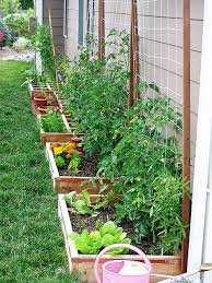 Container Gardening For Food - container garden note the wall of food gardening the tomatoes are