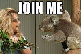 Best Animal Memes - 10 best australian animal memes
