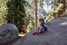 what to do in sequoia national park in one day no back home
