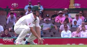 cricket san jose hair show april 2015 australian cricketer hilton cartwright is hit in the groin and