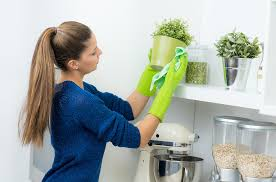 küche putzen küche richtig putzen so schonen sie ihren geldbeutel und die