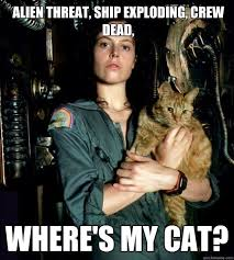 Cat Alien Meme - ripley alien threat ship exploding crew dead where s my cat