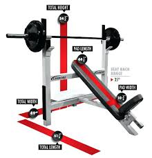 Training Bench Press Legend Fitness 3106 Basic Olympic Incline Bench Press Dimensions