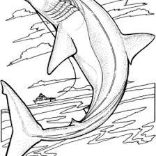 lemon shark coloring kids drawing coloring pages marisa