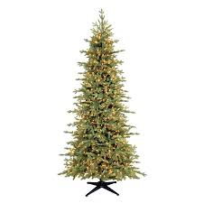 holiday concepts ridgeline fir christmas tree