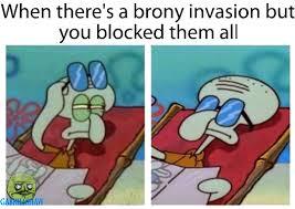 Brony Memes - the best brony memes memedroid