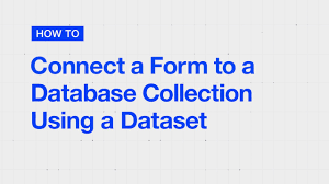 wix code how to create a custom form u0026 connect it to a database