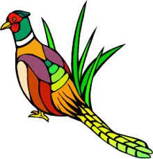 state bird of south dakota south dakota bird us states edition countryreports