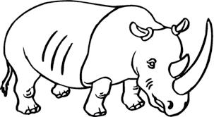 belajar mewarnai gambar binatang badak untuk anak tk