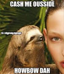 Sloth Rape Meme - oh rape sloth funny pinterest sloth sloth memes and memes