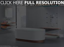 Modern Wallpaper For Bathrooms Ideas Blue Eclectic Bathroom Photos Hgtv Powder Room With Bright