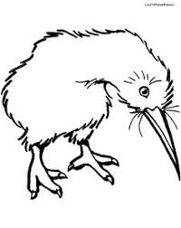 amazing idea kingfisher animal coloring pages parrot page