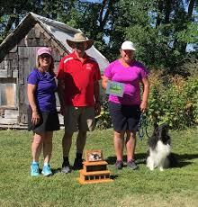 backyard agility dogs home facebook