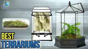 socker greenhouse 8 best terrariums 2017 youtube