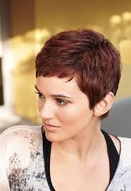 short pixie haircut styles for overweight women 29 best kapsels images on pinterest pixie cuts short cut