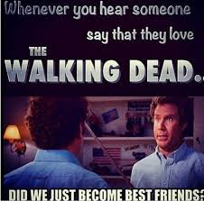 Did We Just Become Best Friends Meme - 5974 best funny shit images on pinterest funny memes funny