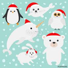 arctic polar animal set white bear owl penguin seal pup baby