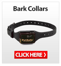 remote collars all the best collars on