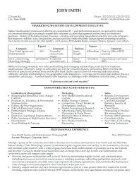 best resume format for executives executive sales resume professional sales resume format awesome best