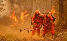 Wildfire Scientific Definition by California U0027s Inmate Firefighters Are Cheap Labor For A Dangerous