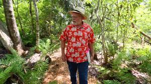 florida native plants natural landscape yard tour to feature native florida plants