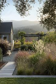 vineyard haven a napa valley garden that belongs to the land