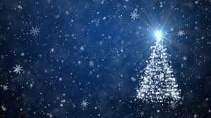 christmas tree free video clips 352 free downloads