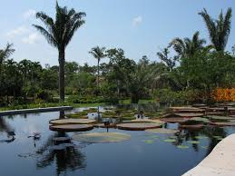 Naples Florida Botanical Garden File Naples Botanic Garden 03 Jpg Wikimedia Commons