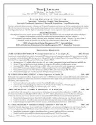 Sample Resume For Supply Chain Executive by Sample Executive Summary For Sales Resume 6 Sales Executive Resume