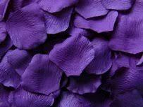 Purple Aisle Runner Used Aisle Runners Preowned Aisle Runners Tradesy