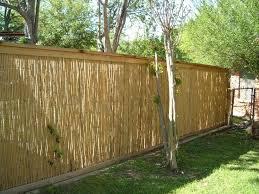 Fence Backyard Ideas by Best 25 Cheap Privacy Fence Ideas Only On Pinterest Cheap Fence