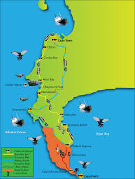 Map Of Cape Town South Africa by Cape Point Day Trips Cape Point Peninsula Tours