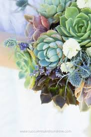 succulent bouquet succulent bouquet garden succulents and