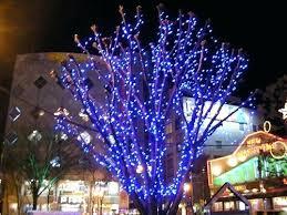 christmas lights to hang on outside tree light hanging light outside