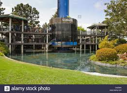 Sea World San Diego Map by Seaworld San Diego Sky Tower Stock Photo Royalty Free Image