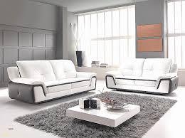 entretenir un canap en cuir canape best of comment entretenir un canapé en cuir noir hd